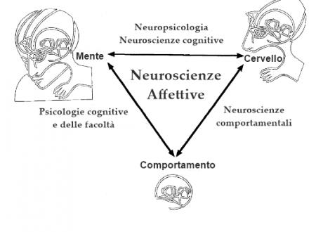 La triangolazione e le neuroscienze affettive