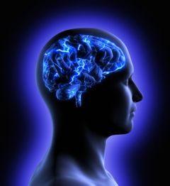 Le moderne neuroscienze delle emozioni
