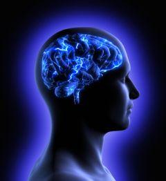 Rivoluzione neuroscientifica